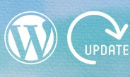 WordPress Plugin-Updates