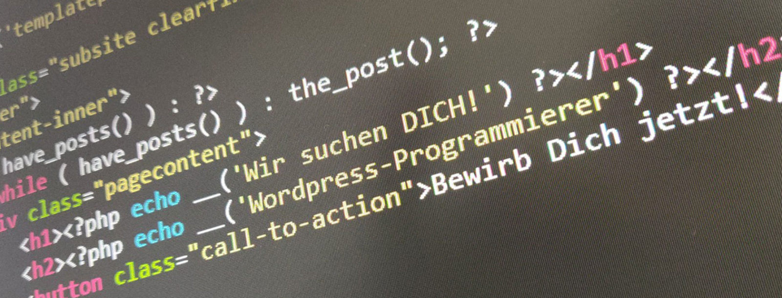 wordpress-programmierer
